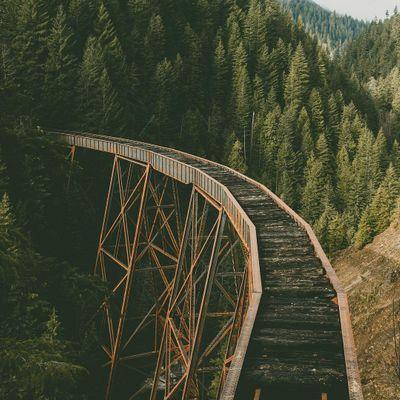 atlas-ladner-creek-trestle-abandoned-82d25.jpg